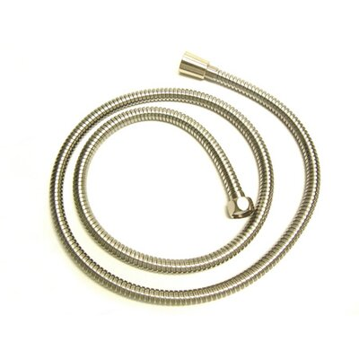 Vintage Shower Hose Finish: Satin Nickel