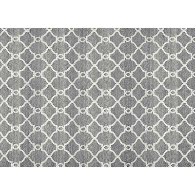 Silky Dark Gray Area Rug Rug Size: 79 x 98