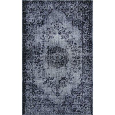 Istanbul Dark Gray Area Rug Rug Size: 52 x 76
