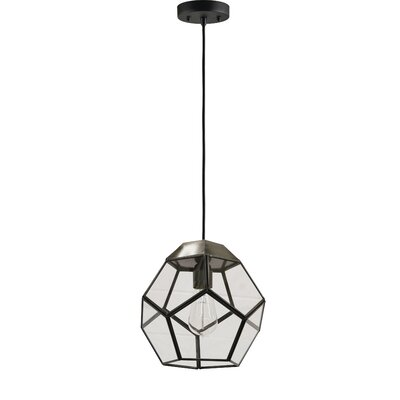 Biosphere 1-Light Mini Pendant