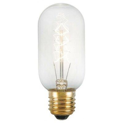 Portland 40W A E26-Light Bulb