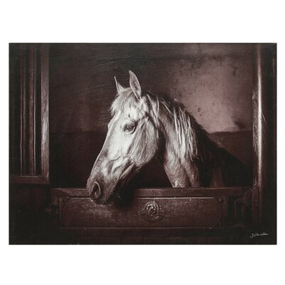 'Sepia Stable' Photographic Print on Canvas 124401