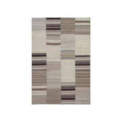 Ivory/Gray Area Rug Rug Size: 52 x 72