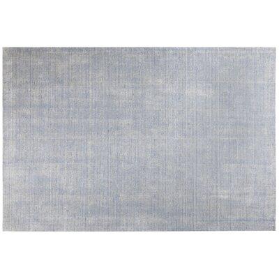 Casper Blue Area Rug Rug Size: 52 x 76