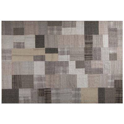 Gray/Beige Area Rug Rug Size: 79 x 98