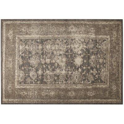 Monastery Beige/Gray Area Rug Rug Size: 79 x 98