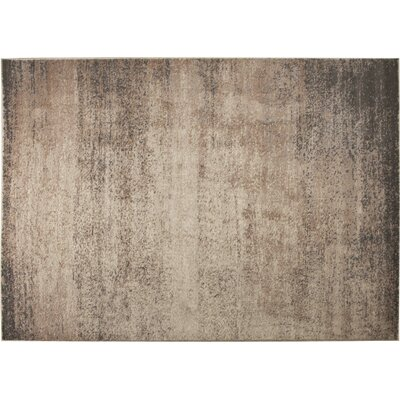 Azure Beige/Gray Area Rug Rug Size: 5'2