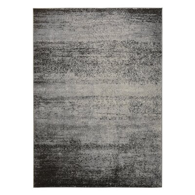 Fredrik Black/Gray Area Rug Rug Size: 52 x 72