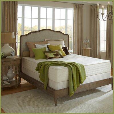 "Plush Beds Botanical Bliss 10"" Latex Foam Medium-Firm Mattress - Size: Twin Extra Long"