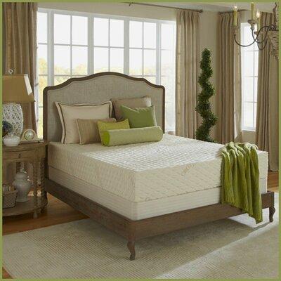"""Plush Beds Natural Bliss 6"""" Latex Foam Medium FirmMattress - Size: Split King"""