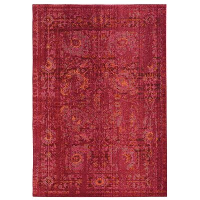 Expressions Oriental Pink Area Rug Rug Size: Rectangle 4 x 59