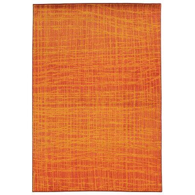 Expressions Abstract Orange Area Rug Rug Size: 53 x 76