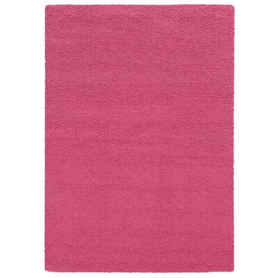 Focus Pink Shag Area Rug Rug Size: Rectangle 710 x 1010