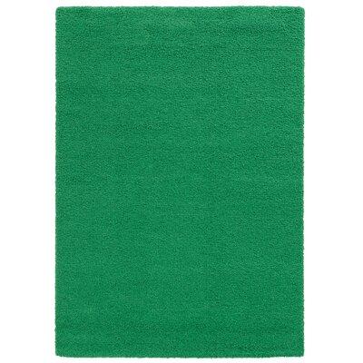 Focus Green Shag Area Rug Rug Size: Rectangle 67 x 96