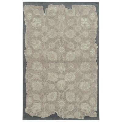 Color Influence Distressed Look Grey / Green Area Rug Rug Size: 5 x 8