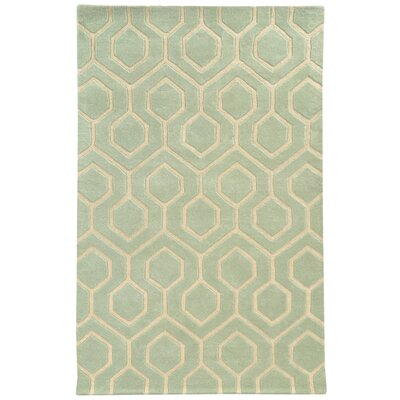 Optic Green/Ivory Geometric Area Rug Rug Size: 36 x 56