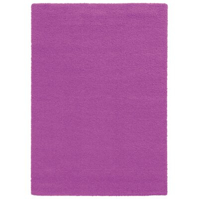 Focus Pink Shag Area Rug Rug Size: Rectangle 67 x 96