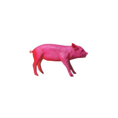 Reality Bank In The Form Of A Pig Piggy Bank Finish: Pink