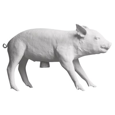 Reality Bank In The Form Of A Pig Piggy Bank Finish: White