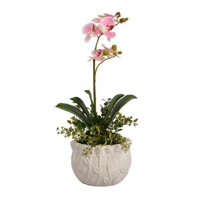 Pink Floral Arrangement in Pot HOHM8169 43615048