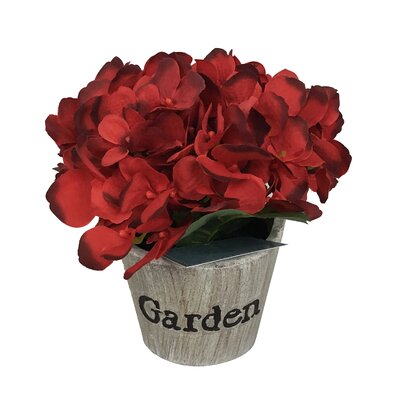 Hydrangeas Floral Arrangement in Beige Pot Flower Color: Red