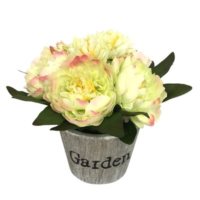 Peonies Floral Arrangement in Pot Flower Color: Yellow