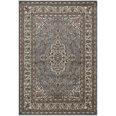 Regal Traditional Medallion Grey Area Rug Rug Size: 710 x 106