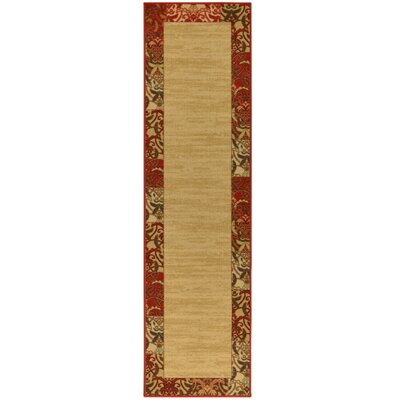 Aaron Bordered Design Area Rug Rug Size: Runner 2 x 7
