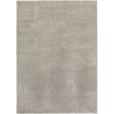 NEW Shag Solid Beige Area Rug Rug Size: 33 x 47