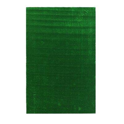 Bundine Solid Grass Design Green Indoor/Outdoor Area Rug Rug Size: Rectangle 66 x 93
