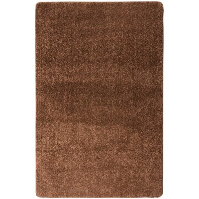 Luxury Brown Area Rug Rug Size: 5' x 7'