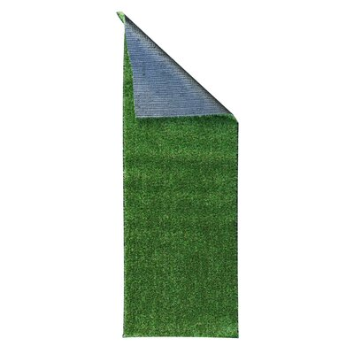 Meadowland Green Indoor/Outdoor Area Rug Rug Size: 311 x 66