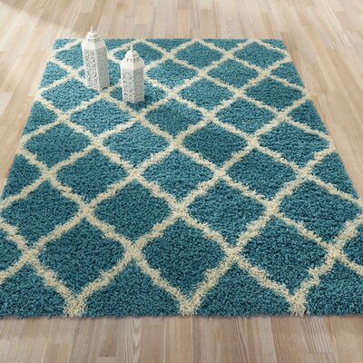 Radford Soft Turquoise Shaggy Area Rug Rug Size: 33 x 47