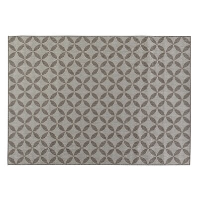 Emma Contemporary Star Design Gray Outdoor Area Rug Rug Size: 53 x 73