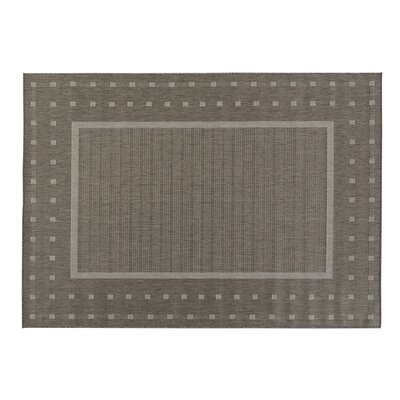 Jardin Contemporary Bordered Design Gray Outdoor Area Rug Rug Size: 53 x 73