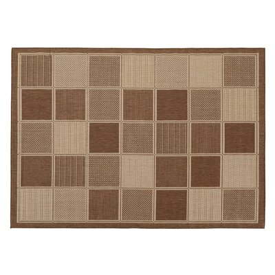 Goodhue Contemporary Boxes Design Brown Outdoor Area Rug Rug Size: 53 x 73