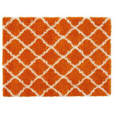 Ultimate Moroccan Trellis Soft Orange Shaggy Area Rug Rug Size: 33 x 47