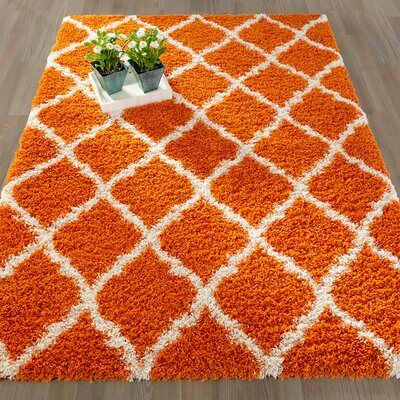Radford Soft Orange Shaggy Area Rug Rug Size: 33 x 47