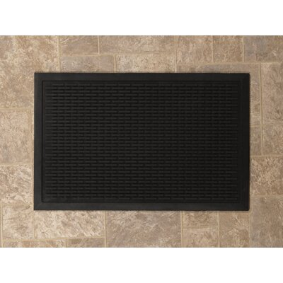Entrance Scraper Doormat Rug Size: 16 x 26