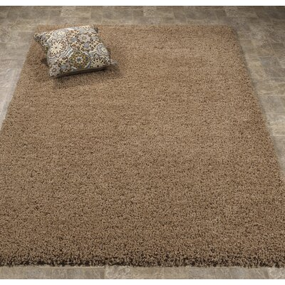 Ultimate Shaggy Soft Cozy Beige Area Rug Rug Size: 5 x 7
