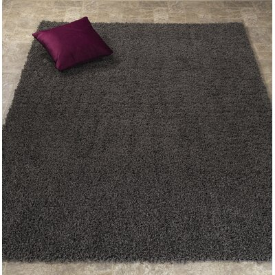 Ultimate Shaggy Soft Solid Plush Shag Dark Gray Area Rug Rug Size: 710 x 910