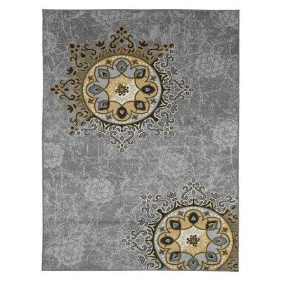 Deidra Floral Gray Area Rug Rug Size: 5 x 6