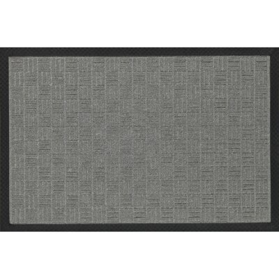 Carpeted Rubber Outdoor Doormat Color: Silver, Mat Size: Rectangle 16 x 26