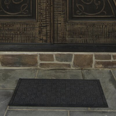 Carpeted Rubber Outdoor Doormat Color: Charcoal, Rug Size: Rectangle 2 x 3