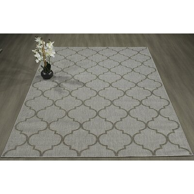 Emma Trellis Power Loom Light Gray Indoor/Outdoor Area Rug Rug Size: 27 X 70