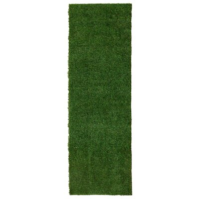 Meadowland Green Indoor/Outdoor Area Rug Rug Size: Runner 18 x 411