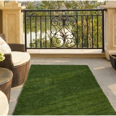 Garden Grass Green Indoor/Outdoor Area Rug Rug Size: 311 x 66