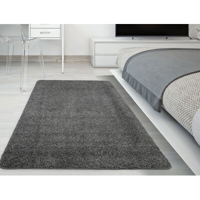 Luxury Gray Area Rug Rug Size: 5 x 7