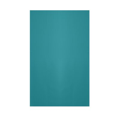 Solid Lake Blue Indoor/Outdoor Area Rug Rug Size: Rectangle 3 x 5