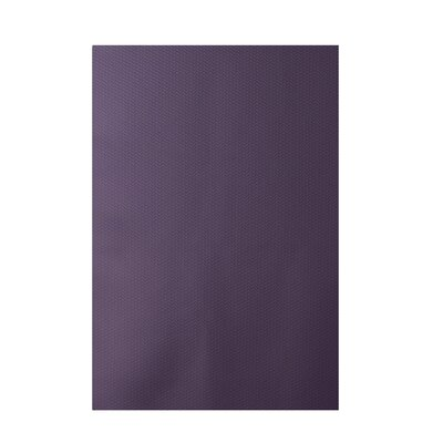 Solid Purple Indoor/Outdoor Area Rug Rug Size: Rectangle 2 x 3